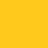 K02 - 3021 Yellow 631 - 24in