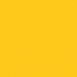 K01 - 3021 Yellow 631 - 12in