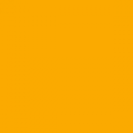 N03 - X020 Golden Yellow 651 - 10ft