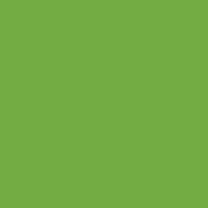 4063M Lime-Tree Green 641 Sheet